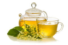 Herbal medicine, tea with  elder flower Royalty Free Stock Photo