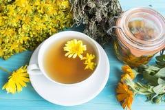 Herbal Medicine, Tea, St. John`s Wort, Savory, and Calendula Oil Stock Images