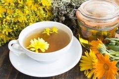 Herbal Medicine, Tea, St. John`s Wort, Savory, and Calendula Oil Stock Image