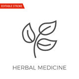 Herbal Medicine Vector Icon Royalty Free Stock Images