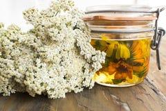 Herbal Medicine, Yarrow and Calendula Oil Stock Photography
