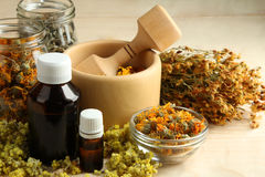 Herbal medicines Royalty Free Stock Photos