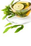 Herbal Mint Tea Royalty Free Stock Image
