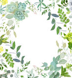 Herbal mix square vector frame. Hand painted plants, branches, leaves, succulents and flowers on white background.