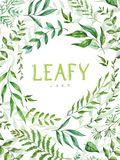 Herbal mix vector frame. Hand painted plants, branches and leaves on white background. Natural card design. royalty free illustration