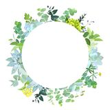 Herbal mix vector round frame. Stock Photography
