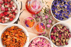 Herbal natural floral tea Royalty Free Stock Photo