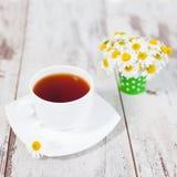 Herbal natural healthful drink imagens de stock royalty free