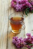 Herbal natural tea with fresh acacia flowers. Ingredients, on color wooden background royalty free stock photography