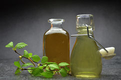 Herbal natural tincture. On a dark background Royalty Free Stock Image