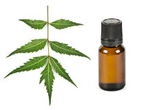 Herbal neem oil concept stock images