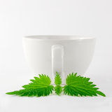 Herbal Nettle Tea Cup. White china mug with nettle leaf in front of it Stock Photography