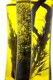 Herbal oil Stock Photography