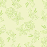 Herbal pattern 1 Royalty Free Stock Photography