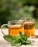 Herbal peppermint tea closeup macro outdoor summer Stock Photography