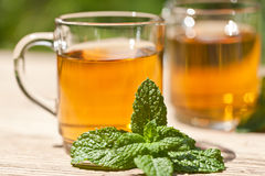 Herbal peppermint tea closeup macro outdoor summer Royalty Free Stock Images