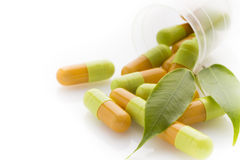 Herbal pill. Royalty Free Stock Image
