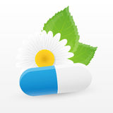 Herbal pill. Vector illustration. Stock Image