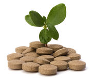Herbal pills Royalty Free Stock Photos