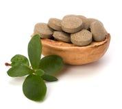 Herbal pills Royalty Free Stock Photo