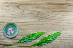 Herbal pills and tablets on a wooden background Royalty Free Stock Photos