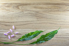 Herbal pills and tablets on a wooden background Stock Photos