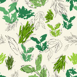 Herbal plant patter Stock Photos