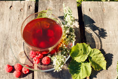 Herbal raspberry and melissa tea. In transparent tea cup on wooden desks Royalty Free Stock Images