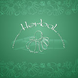 Herbal Remedy theme vector illustration with  hand drawn silhouette chamomile. Stock Images