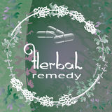 Herbal Remedy theme vector illustration with  herbs and flowers . Stock Photography