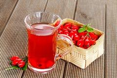 Herbal rosehip  tea Stock Images