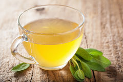 Herbal sage tea with green leaf in glass cup Royalty Free Stock Image
