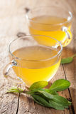 Herbal sage tea with green leaf in glass cups Stock Photography