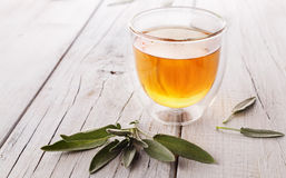 Herbal sage tea on wooden background. Hot herbal organic sage tea with sage leaves on white rustic wooden background stock photo