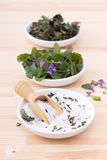 Herbal salt and ground ivy Royalty Free Stock Photography