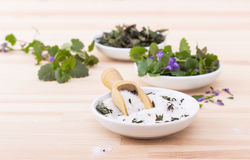 Herbal salt and ground ivy Royalty Free Stock Photo