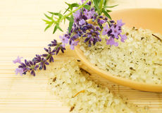 Herbal Sea Salt Stock Photo