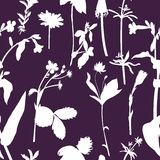 Herbal seamless pattern Royalty Free Stock Photography