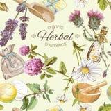 Herbal seamless pattern royalty free illustration