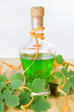 Herbal Shampoo Royalty Free Stock Images