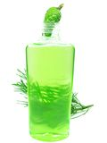 Herbal shampoo bottle with fir essence Royalty Free Stock Photography