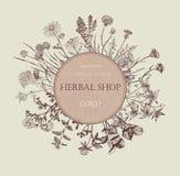 Herbal shop logo. Hand drawn design. Royalty Free Stock Photography