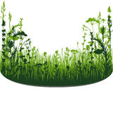 Herbal silhouette background Stock Images