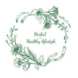 Herbal Sketch Round Frame. With flowers medical natural plants and ribbons in vintage style isolated vector illustration Royalty Free Stock Image