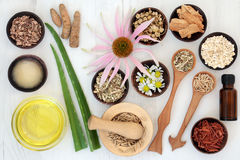 Herbal Skincare With Healing Ingredients Royalty Free Stock Photo