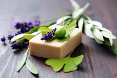 Herbal soap. Bar of herbal soap with fresh herbs and olives - beauty treatment Royalty Free Stock Images
