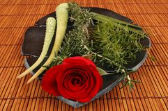 Herbal Spa. Rose, aloe plant and herbs on bamboo Stock Photography