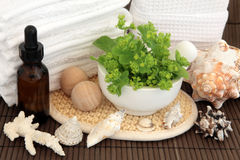 Herbal Spa Stock Photography