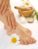 Herbal Spa.Chamomiles stock photo