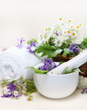 Herbal Spa Set with Mortar and Towel Stock Photos